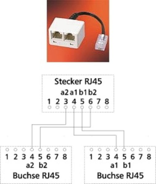 Adapter UAE WE8(4) auf 2 x RJ45 - IEC-Norm a/b