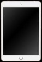 Apple iPad mini Wi-Fi 256GB gold MUU62FD/A